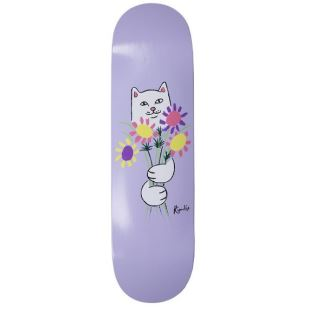 Board Nermcasso Purple 8.25